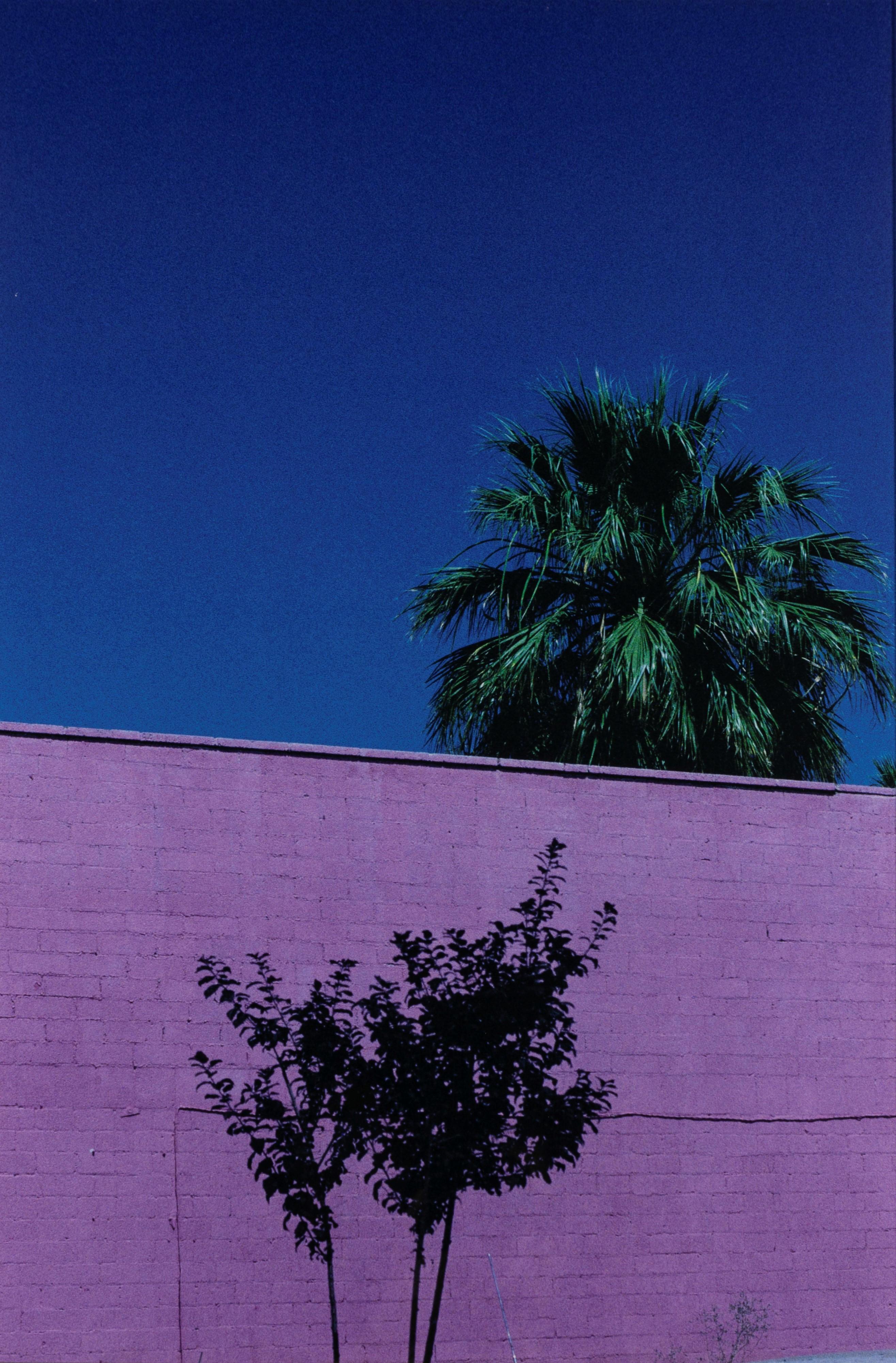 Paesaggio Urbano, Phoenix - Arizona